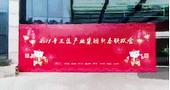 匠心智造 盈势瑞彩——2019年度三盈产业集团新春联欢会盛大召开